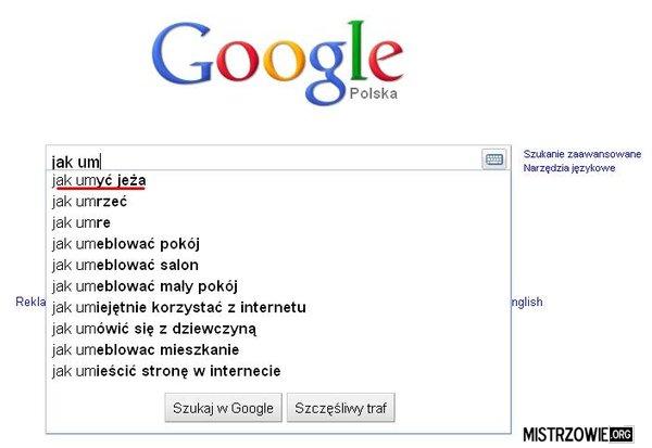 Google i jeż –