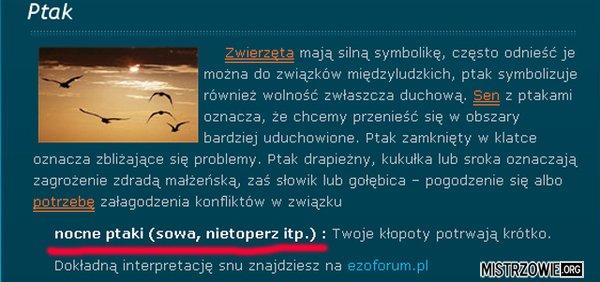 Polska ornitologia... –