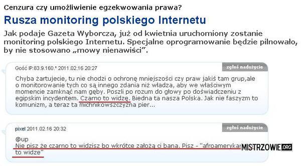 Monitoring polskiego Internetu –