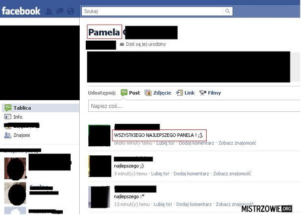 Pamela czy tam panela , jeden kij . . . . –
