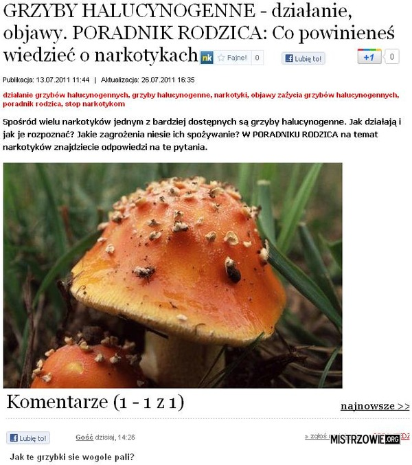 Palenie grzybów –