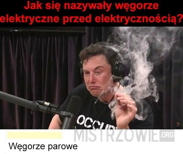 Węgorze